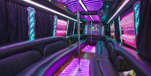 20 PASSENGER PARTY BUS BACHELORETTE PARTY SERVICE, High school, Party Bus, Shuttle, Charter, Birthday, Prom, Bachelor, Wedding, Nightlife, Birthday