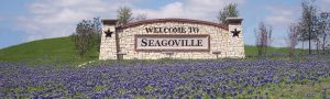 Seagoville Limo Rental Services Company, DFW, Limousine, Party Bus, Shuttle, Charter, Birthday, Wedding, Bachelor Party, Bachelorette, Nightlife, Sports, Cowboys, Rangers, Mavericks